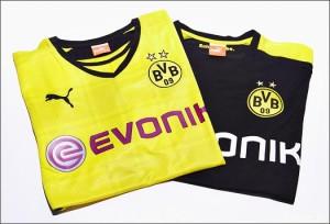 Borussia_Dortmund_Home_1314_IMG1