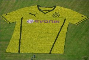 Borussia_Dortmund_Home_1314_IMG5