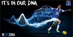 Everton_Home_Shirt_1314_IMG5