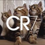 Nike запустил серию коротких клипов о бутсах CR7