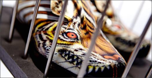adidas-Tunit-YY-Tiger-Img7