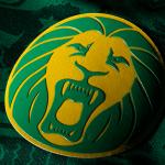 Африканские комплекты от Puma 2014