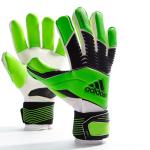 Вратарские перчатки Adidas Predator Zones Pro