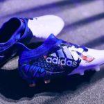 Валлийский дракон от Adidas